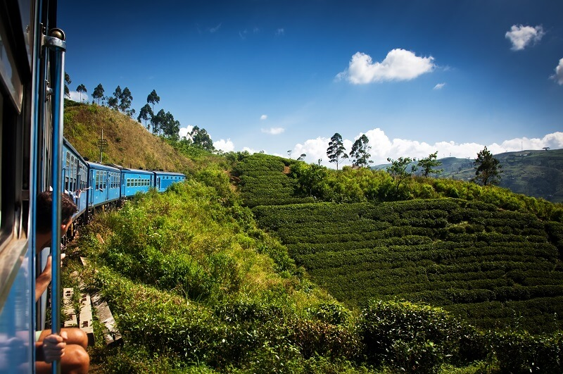 Tea country and golden beaches of Sri Lanka